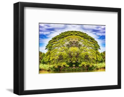 The Majestic Tree-Philippe Sainte-Laudy-Framed Photographic Print