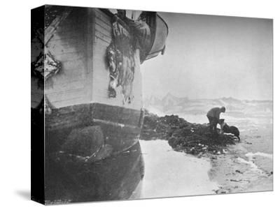 'The Stern of the Fram. Johansen and 'Sultan' ,16 June, 1894', (1897)-Unknown-Stretched Canvas Print