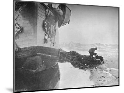 'The Stern of the Fram. Johansen and 'Sultan' ,16 June, 1894', (1897)-Unknown-Mounted Photographic Print