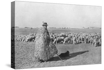 'A typical shepherd and his flock on the plains of Hungary', 1915-Unknown-Stretched Canvas Print