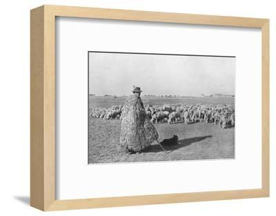 'A typical shepherd and his flock on the plains of Hungary', 1915-Unknown-Framed Photographic Print