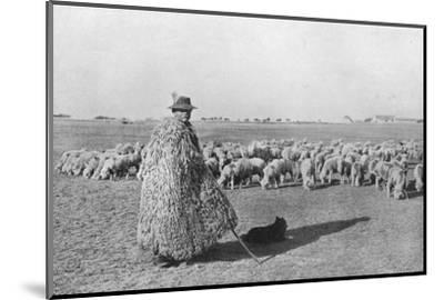 'A typical shepherd and his flock on the plains of Hungary', 1915-Unknown-Mounted Photographic Print