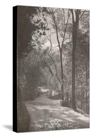 'The Spirit of Tijuca', 1914-Unknown-Stretched Canvas Print
