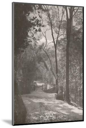 'The Spirit of Tijuca', 1914-Unknown-Mounted Photographic Print