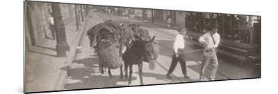 'By tram and mule', 1914-Unknown-Mounted Photographic Print