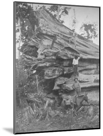 'A big bit of Brazilian Timber', 1914-Unknown-Mounted Photographic Print