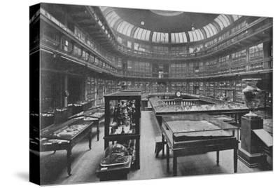 'Interior of the Geological Museum, Jermyn Street', 1904-Unknown-Stretched Canvas Print