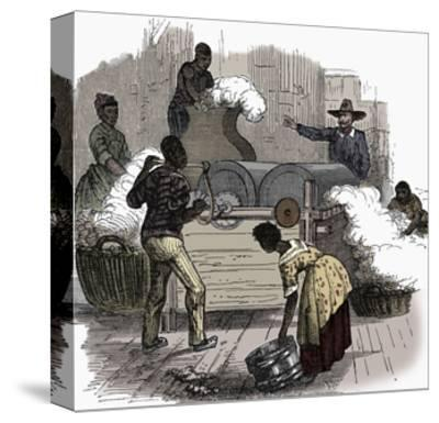 Slave labour on a cotton plantation in the southern states of America, 1860-Unknown-Stretched Canvas Print
