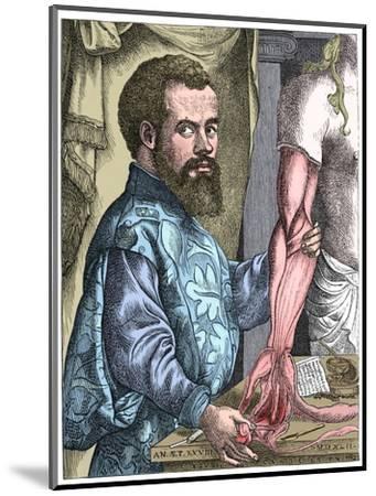 Andreas Vesalius, 16th century Flemish anatomist-Unknown-Mounted Giclee Print