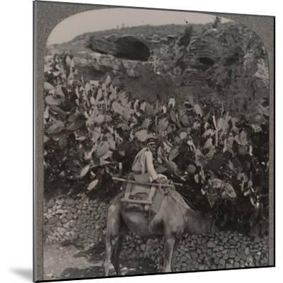 'Golgotha (The Place of the Skull)', c1900-Unknown-Mounted Photographic Print