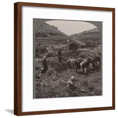 'Threshing grain near Jacob's Well', c1900-Unknown-Framed Photographic Print