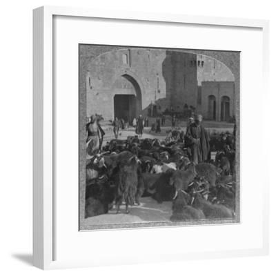 'Buying goats at the Damascus Gate, Jerusalem', c1900-Unknown-Framed Photographic Print