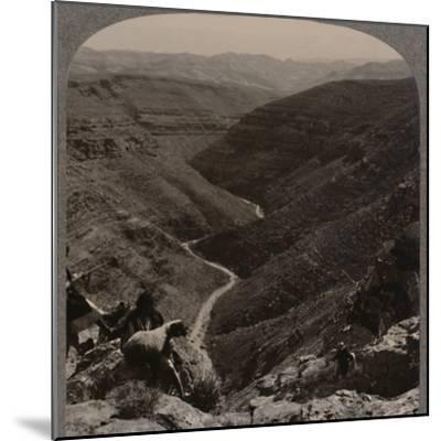 'Valley of the Arno, shepherd and sheep in foreground', c1900-Unknown-Mounted Photographic Print
