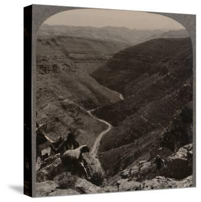 'Valley of the Arno, shepherd and sheep in foreground', c1900-Unknown-Stretched Canvas Print