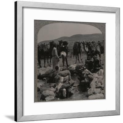 'Watering camels at Jacob's Well', c1900-Unknown-Framed Photographic Print