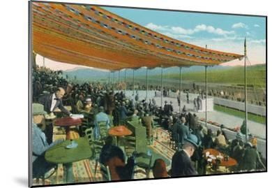 'Watching the Races in front of Club House, Agua Caliente Jockey Club', c1939-Unknown-Mounted Giclee Print