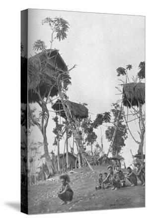 Dobos, tree houses for unmarried women in Melanesia, 1902-W Lindt-Stretched Canvas Print
