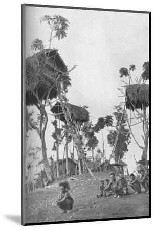 Dobos, tree houses for unmarried women in Melanesia, 1902-W Lindt-Mounted Photographic Print