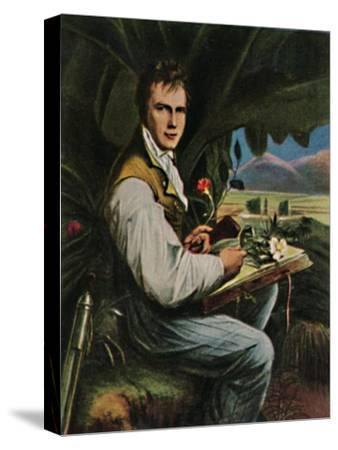 'Alexander von Humboldt 1769-1859. - Gemälde von Weitsch', 1934-Unknown-Stretched Canvas Print