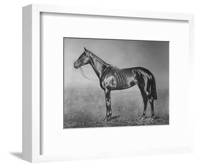 'Signorinetta', 1905-1928, (1911)-Unknown-Framed Giclee Print