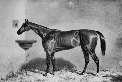 'Virago', 1851-1869, (1911)-Unknown-Framed Giclee Print