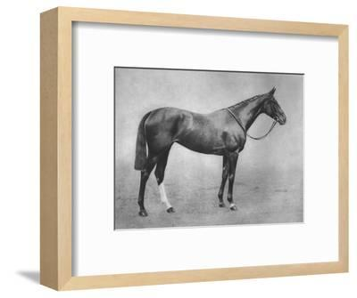'Americus Girl', 1911-Unknown-Framed Photographic Print