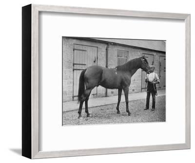 'Donovan', 1886-1905, (1911)-Unknown-Framed Giclee Print