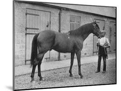 'Donovan', 1886-1905, (1911)-Unknown-Mounted Giclee Print