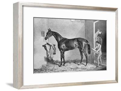 'Joe Miller', 19th century, (1911)-Unknown-Framed Giclee Print