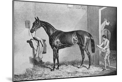 'Joe Miller', 19th century, (1911)-Unknown-Mounted Giclee Print
