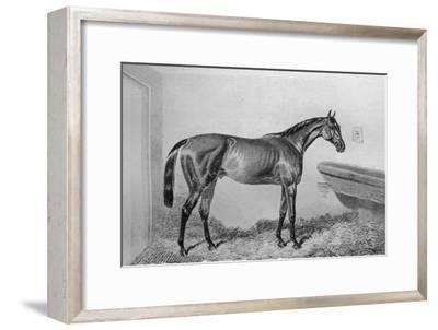 'Saucebox', c1840-1880, (1911)-Unknown-Framed Giclee Print