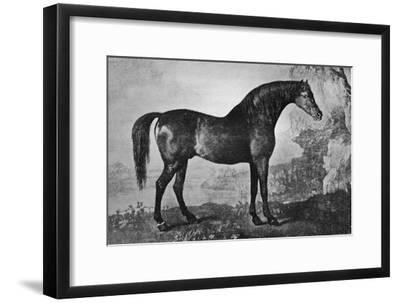 'Marske', 1750-1779, (1911)-Unknown-Framed Giclee Print