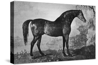 'Marske', 1750-1779, (1911)-Unknown-Stretched Canvas Print