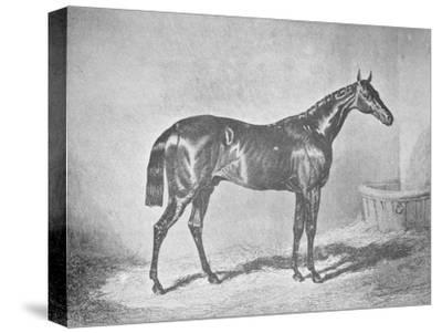 'Charles XII, Winner of the St. Leger' 1839, (1911)-Unknown-Stretched Canvas Print