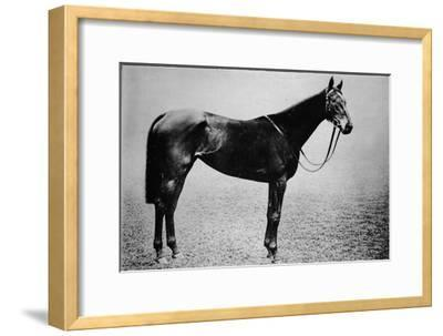 'Sceptre', 1899-1926, (1911)-Unknown-Framed Giclee Print