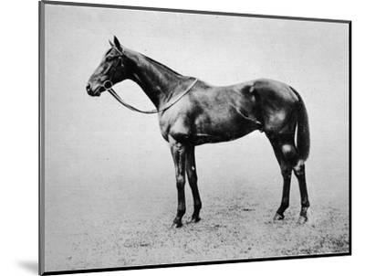 'Swynford', 1907-1928, (1911)-Unknown-Mounted Giclee Print