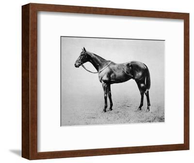 'Swynford', 1907-1928, (1911)-Unknown-Framed Giclee Print