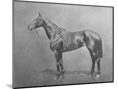 'Flair', 1911-Unknown-Mounted Giclee Print