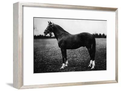'Wildfowler', 19th century, (1911)-Unknown-Framed Giclee Print