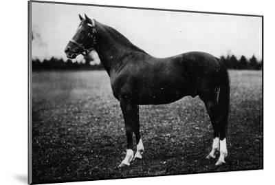'Wildfowler', 19th century, (1911)-Unknown-Mounted Giclee Print