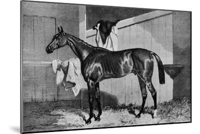 'Warlock', 19th century, (1911)-Unknown-Mounted Giclee Print