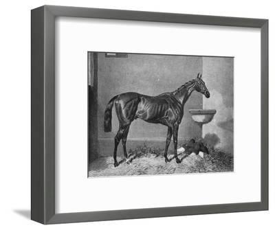 'Russborough', 19th century, (1911)-Unknown-Framed Giclee Print