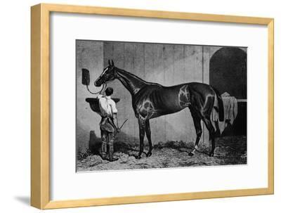 'West Australian', 1850-1870, (1911)-Unknown-Framed Giclee Print