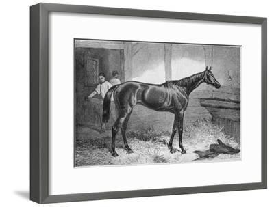 'Brown Duchess', 19th century, (1911)-Unknown-Framed Giclee Print