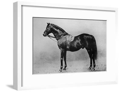 'Galopin, 1872-1899, (1911)-Unknown-Framed Giclee Print