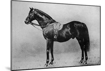'Galopin, 1872-1899, (1911)-Unknown-Mounted Giclee Print