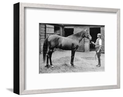 'Foxhall', 1880-1904, (1911)-Unknown-Framed Photographic Print