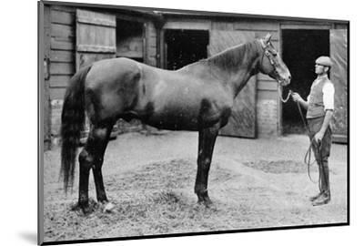 'Foxhall', 1880-1904, (1911)-Unknown-Mounted Photographic Print