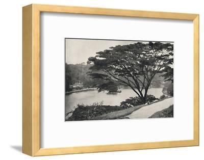 See, Tempel des Heiligen Zahnes und Bibliothek in Kandy, vom Viktoria-Drive ach Osten gesehen-Unknown-Framed Photographic Print