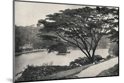See, Tempel des Heiligen Zahnes und Bibliothek in Kandy, vom Viktoria-Drive ach Osten gesehen-Unknown-Mounted Photographic Print